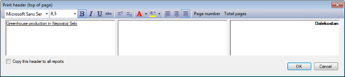 Page header dialog window